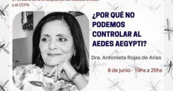 ¿Por Qué No Podemos Controlar El Aedes aegypti?